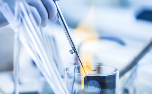 Close-up of lab technician at work - DISF001657
