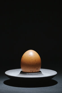 Free-range egg in egg cup in front of black background - BZF000121