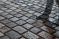 Cobblestone pavement with shadow at night - EJWF000753