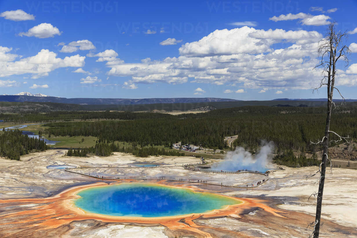 USA,  Yellowstone National Park, Lower Geyser Basin, Midway Geyser Basin, Grand Prismatic Spring, elevated view - FOF008068 - Fotofeeling/Westend61
