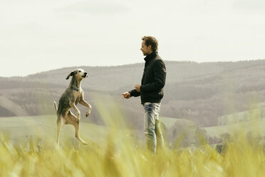 Man exercising with dog on meadow - ONF000812