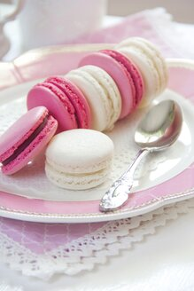 Cocos and blackberry macarons - YFF000372