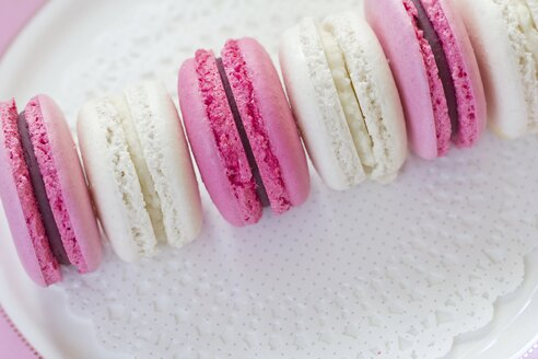 Row of cocos and blackberry macarons - YFF000374