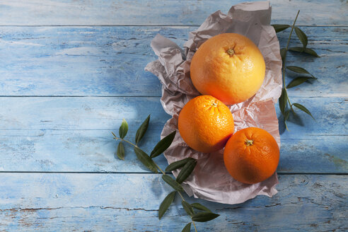 Pink grapefruit and two oranges on paper - CSF025320