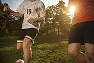Two soccer players on soccer pitch - GCF000059