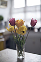 Tulips in a glass on a kitchen table - RIBF000019