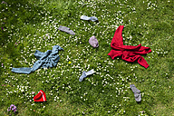Winter clothes lying scattered in spring meadow - MIDF000323