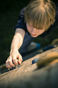 Boy on a climbing wall - SARF001726