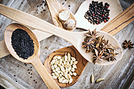Different spices on wooden spoons - IPF000214