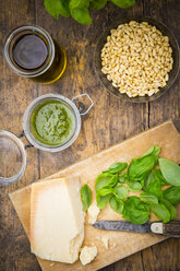 Pesto alla Genovese, Basil, parmesan, pine nuts, olive oil and raw trofie noodles - LVF003220