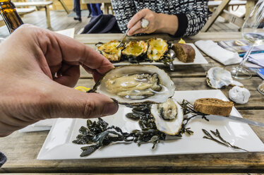 Eating Zeeland oysters in a restaurant - THAF001363