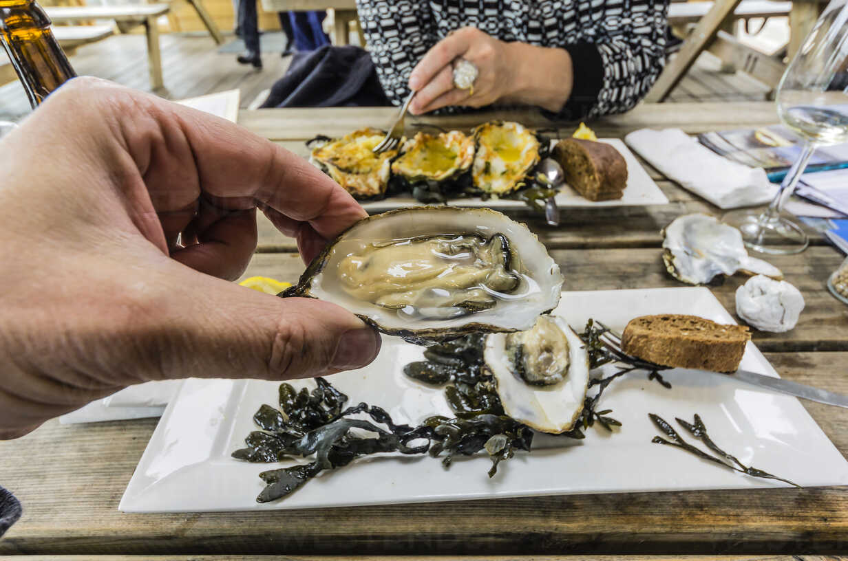 Eating Zeeland oysters in a restaurant - THAF001363 - Thomas Haupt/Westend61