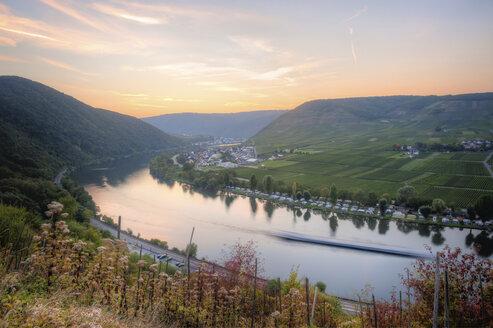 Germany,  Rhineland-Palatinate, Ediger-Eller - PAF001368