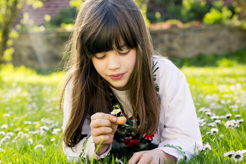 Portrait of girl lying on a meadow watching a daisy - LVF003231