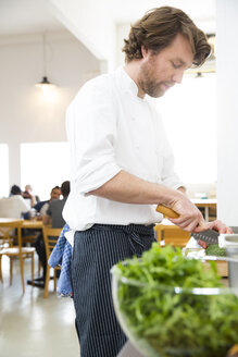 Cook of a bistro preparing food in the kitchen - FKF001054