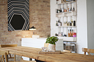 Indoor view of a modern individual bistro - FKF001057