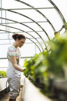 Young female gardener working in plant nursery - UUF003958