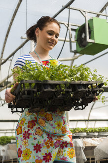 Young female gardener working in plant nursery - UUF003986