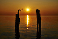 Italy, Punta san Vigilio, sunset over Lake Garda - MRF001635