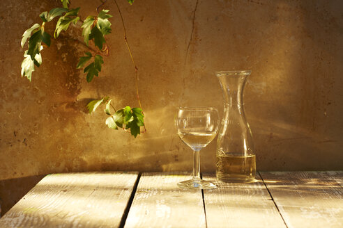 Still life with glass and carafe of white wine and wine leaves - KSWF001450