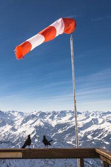 Germany, Bavaria, Nebelhorn, windsock and jackdaws on observation terrace - EGBF000022