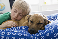 Boy and dog lying on bed - PDF000920
