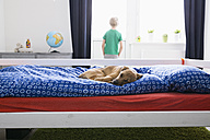 Dog lying on bed with boy in background - PDF000922