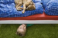 Dog lying on bed with boy underneath - PDF000924