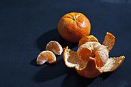 Whole and peeles tangerines - CSF025441