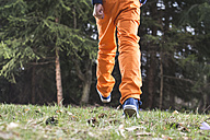Boy wearing orange trousers walking on a meadow - DEGF000406