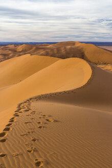 Morocco, Sahara, Erg Chebbi, footmarks  on desert dune - HSKF000014