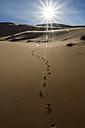 Morocco, Sahara, Erg Chebbi, footmarks on desert dune - HSKF000017