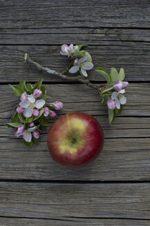Braeburn apple and blossoms on wood - CRF002688