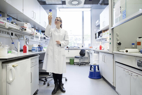 Young female scientist working at biological laboratory inspecting samples - SGF001590