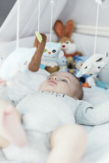 Baby lying in crib looking at cuddly toys - STKF001218