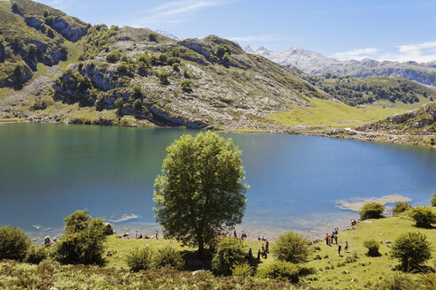Spain, Asturias, Lago Enol, Mountain lake in the area of Picos de Europa - MEMF000742
