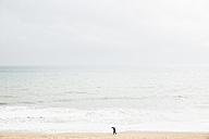 Spain, Mallorca, One person with umbrella walking along the beach - MEM000746