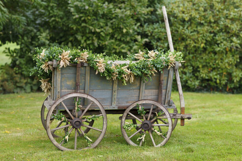 Germany, Luneburger Heide, decorated harvest wagon standing on a meadow - HRF000028