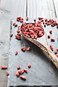 Wooden spoon with goji berries on a slate, superfood - SBDF001889