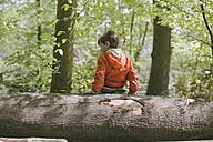 Germany, Bielefeld, boy sitting on log in forest - MMFF000780
