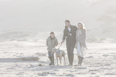 South Africa, Cape Town, happy family walking on the beach with dog - ZEF005244