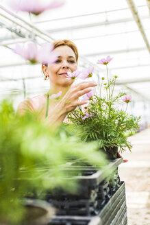 Woman in nursery looking at flower - UUF004352