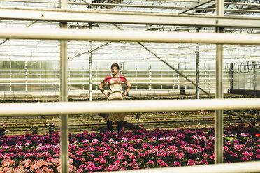 Woman in nursery looking at flowers - UUF004364