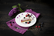 Piece of raspberry-cream cake garnished with blueberries - MAEF010598