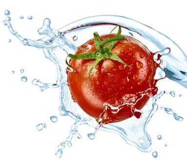 Tomato and water splash - RAMF000061