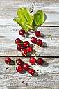 Cherries and leaves on wood - MAEF010615