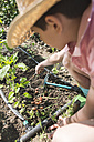 Boy with straw hat planting bulbs in a garden - DEGF000431