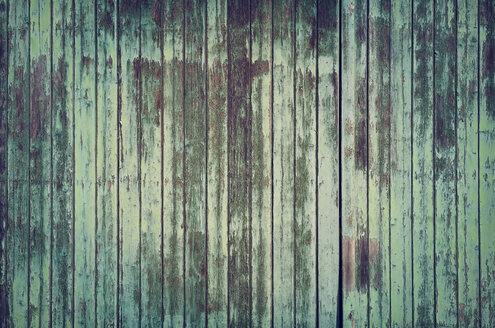 Weathered green old barn door - GUFF000116