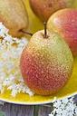 Pears with water drops on plate, elderflowers on wood - YFF000436