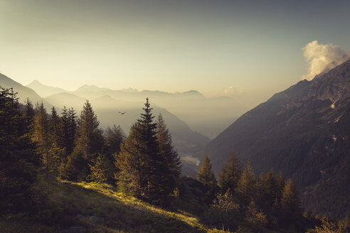 Italy, Lombardy, Chiesa in Valmalenco, Mountains at sunset - DWIF000513